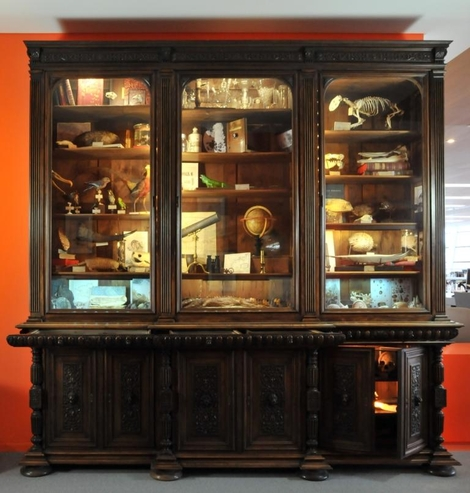 Photo du Cabinet de Curiosités