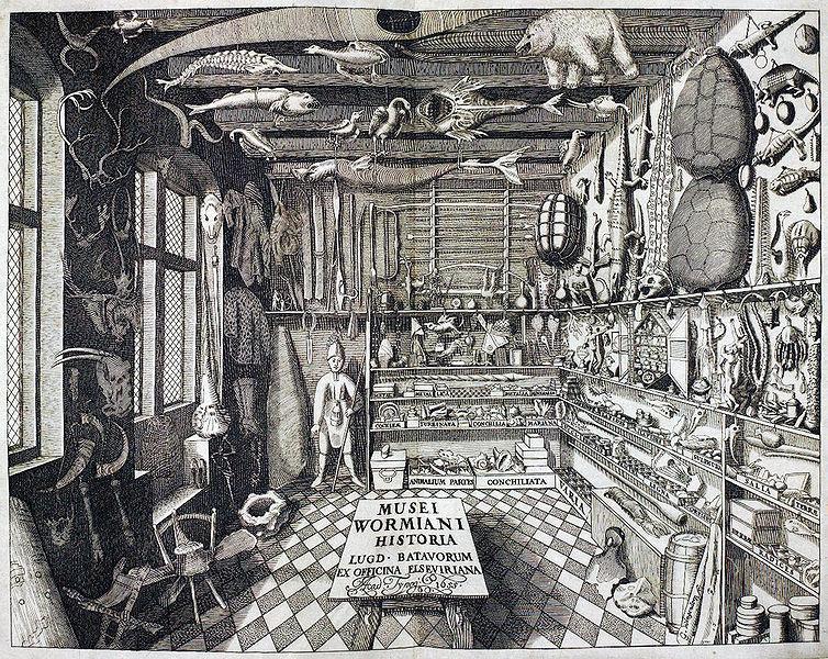 Gravure du cabinet d'Ole Worm